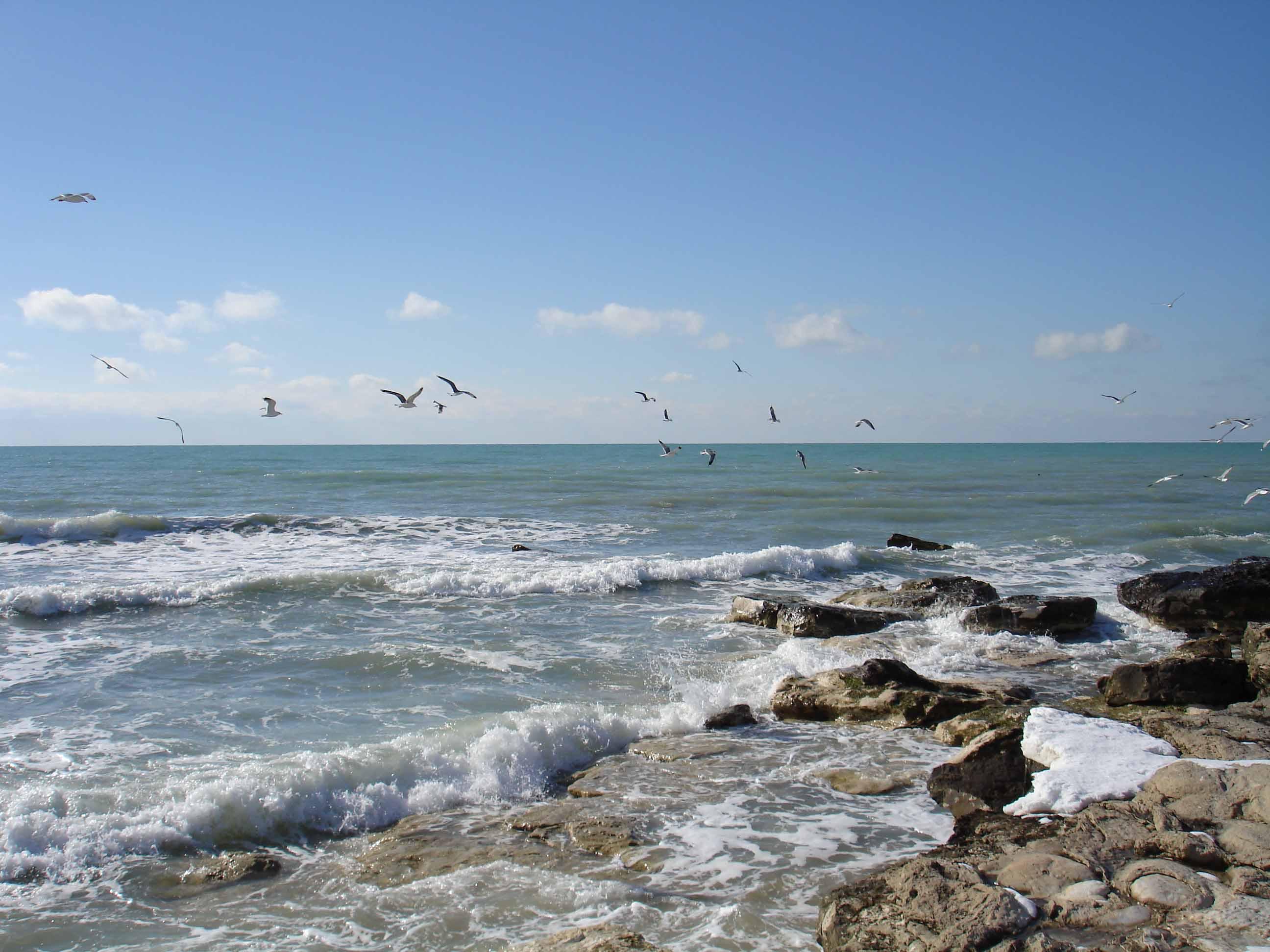 Фото девушек на море каспийском море