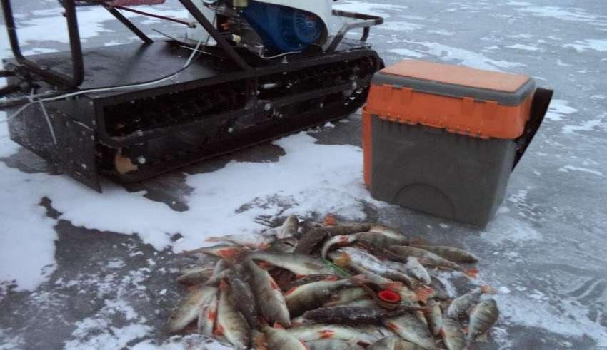 Рыбалка в Вологде и Вологодской области