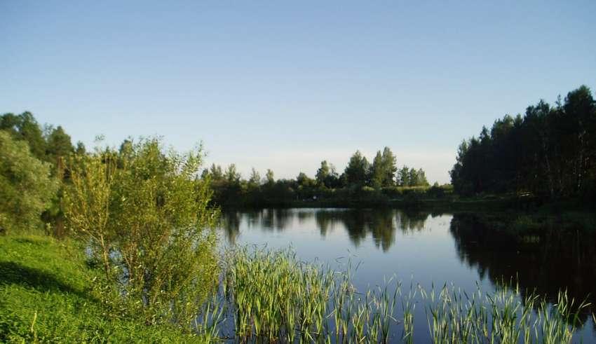 Рыбалка в Иваново