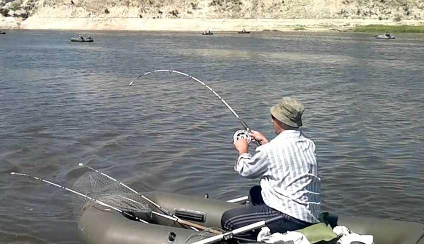 Рыбалка на Дону 2017