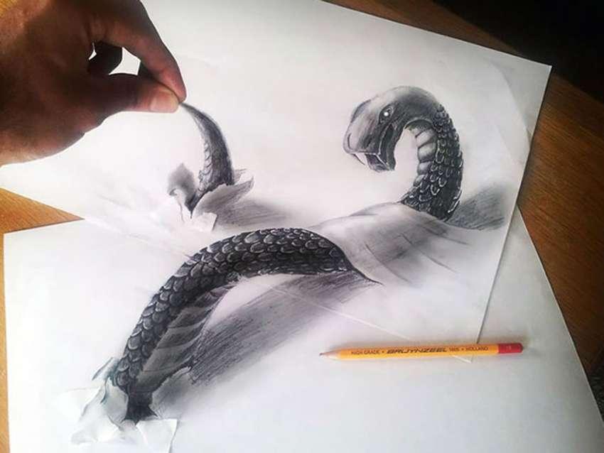 картинки карандашом кенгуру