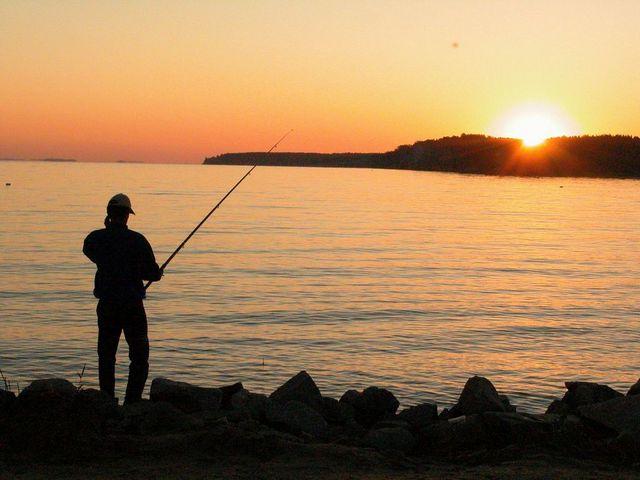 Рыбалка в Домодедовском районе 2015