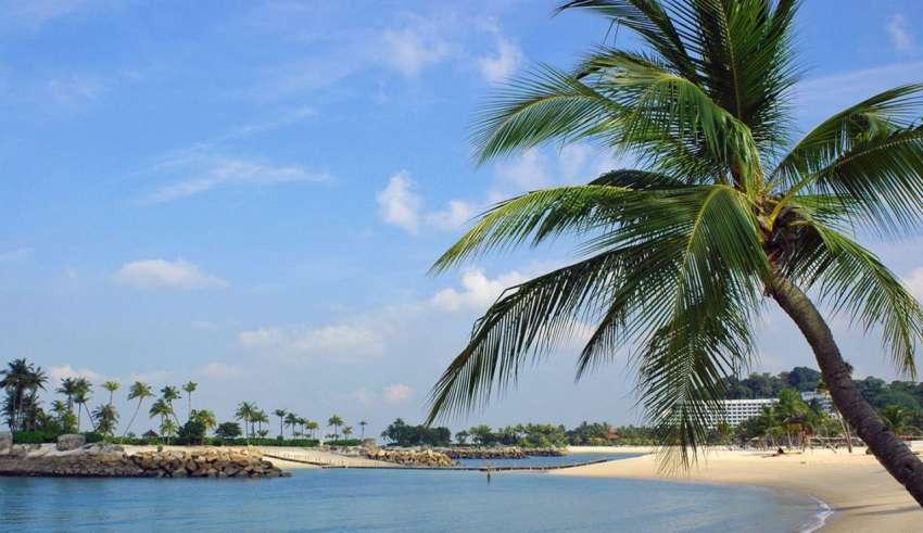 Пляжный отдых в Сингапуре 2015