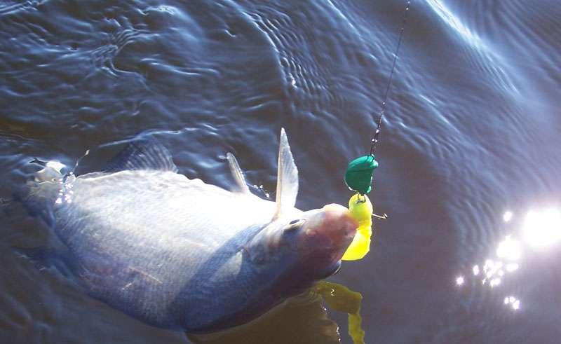 Рыбалка в Бармино 2015