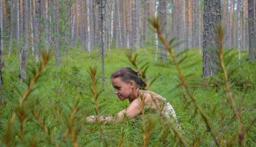 Отдых в Карелии: Бесов нос 2016