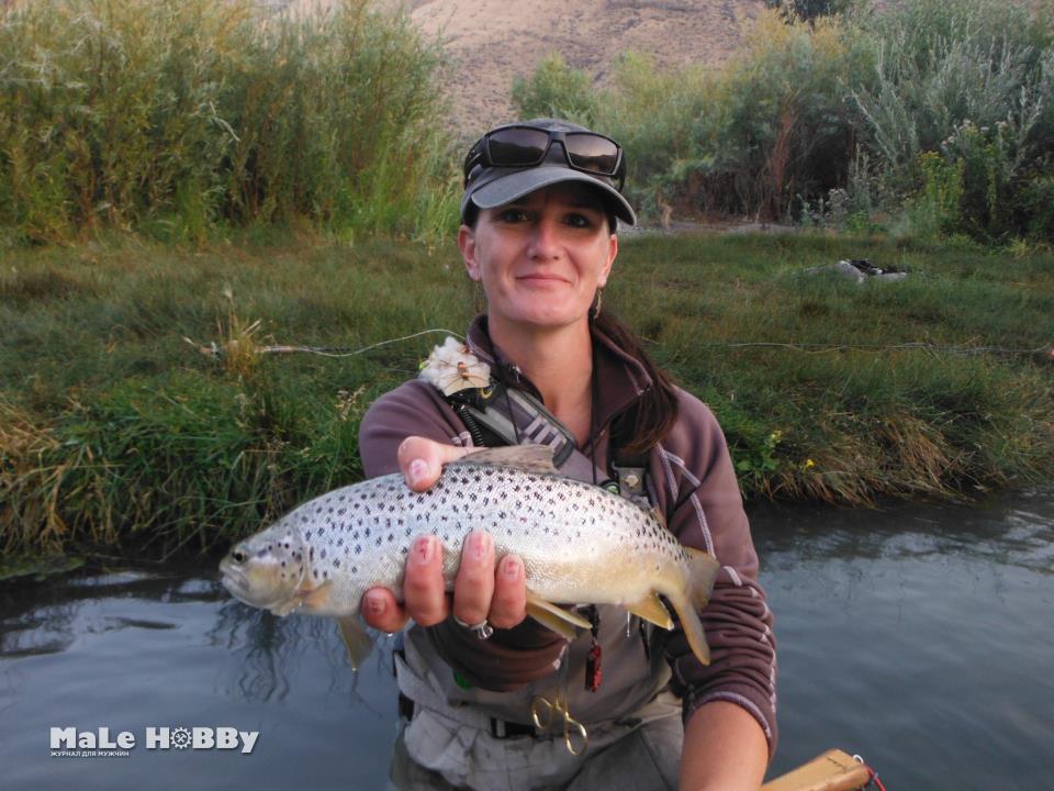 Платная рыбалка в гомельской области цены