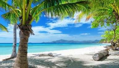 Куда поехать на пляжный отдых зимой 2015-2016
