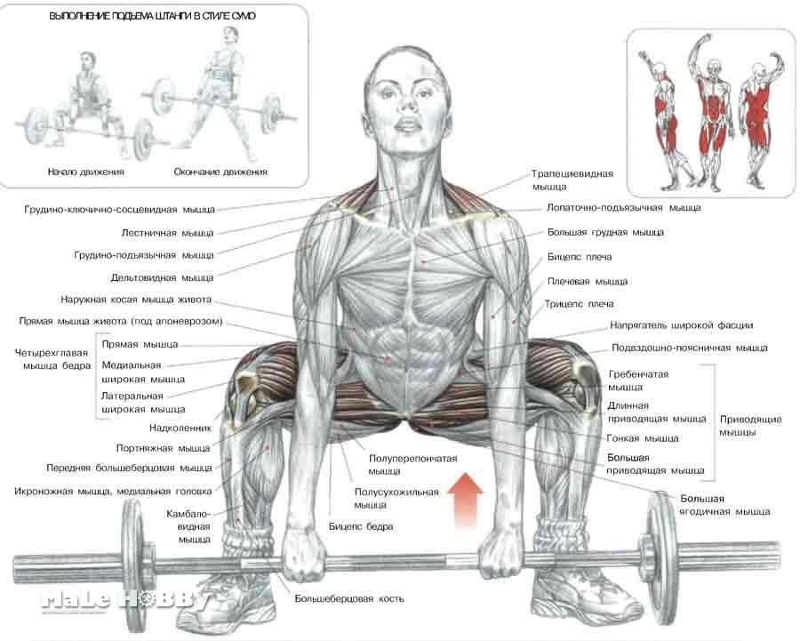 Упражнения на внутреннюю часть бедра картинки 12