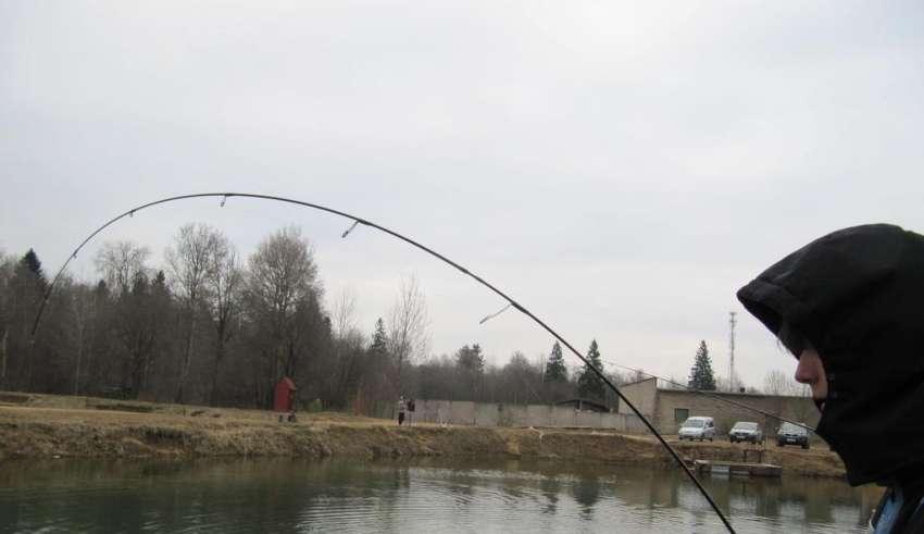 Рыбалка в рыбхозе «Сенеж» в 2016 году