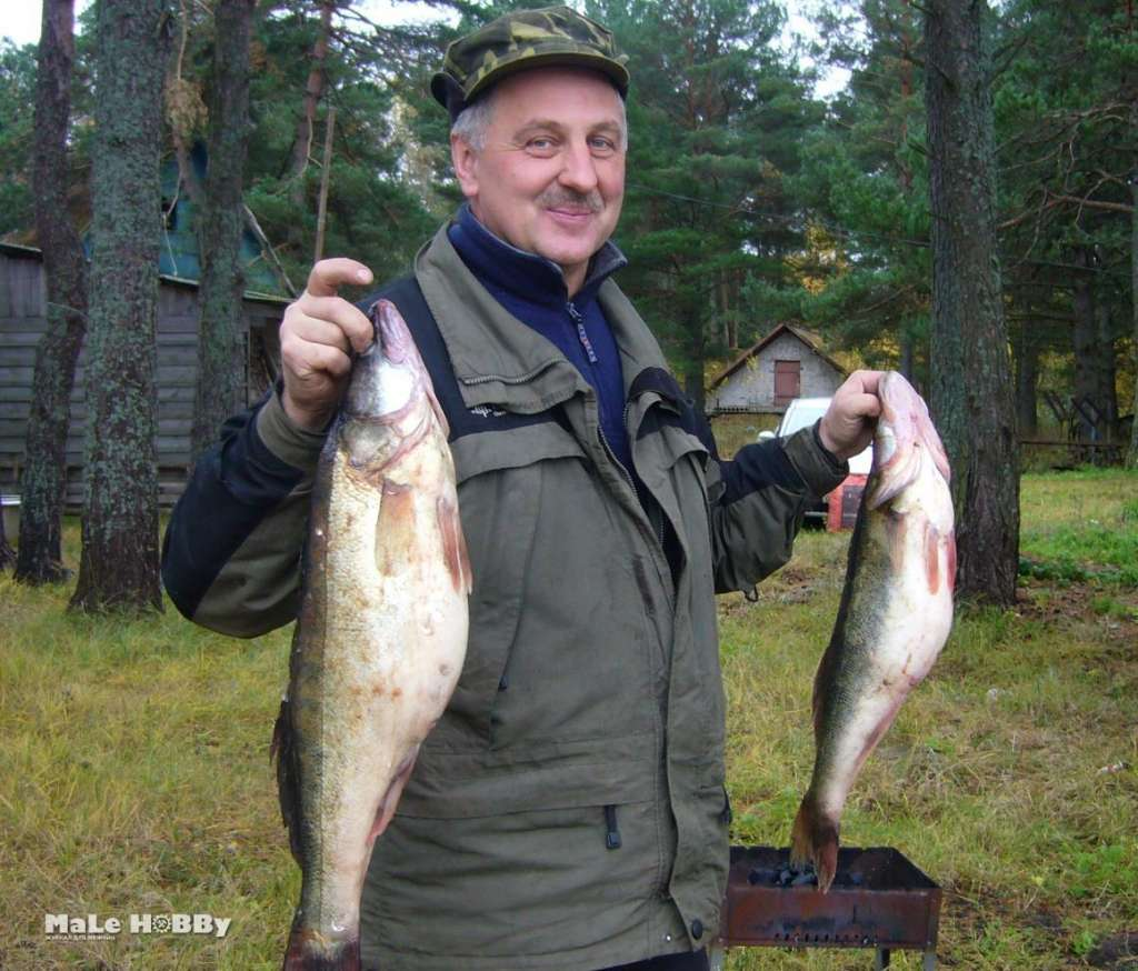 рыбалка карп толстолоб