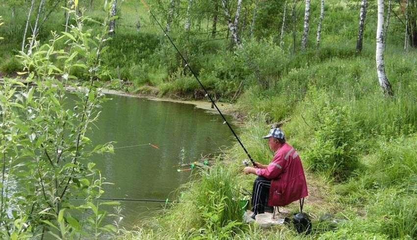 Рыбалка в Домодедовском районе 2016