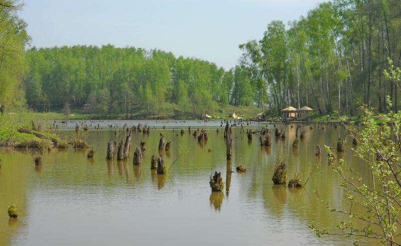 Платная рыбалка в рыболовном парке Лагуна
