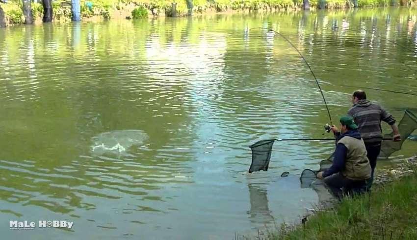 Рыбалка в Лыткино 2016