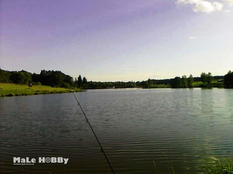 Отчет о рыбалке: 18 мая 2013 - 19 мая 2013, Шустиково платник, пруд