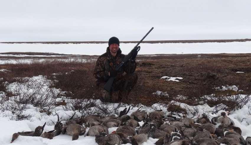 Охота на гуся на севере, в Заполярье