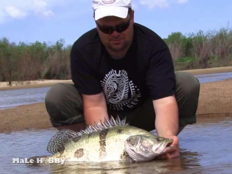 Рыбалка в амурская области
