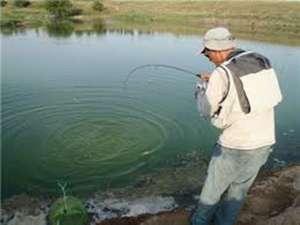 Рыбалка в Запорожье