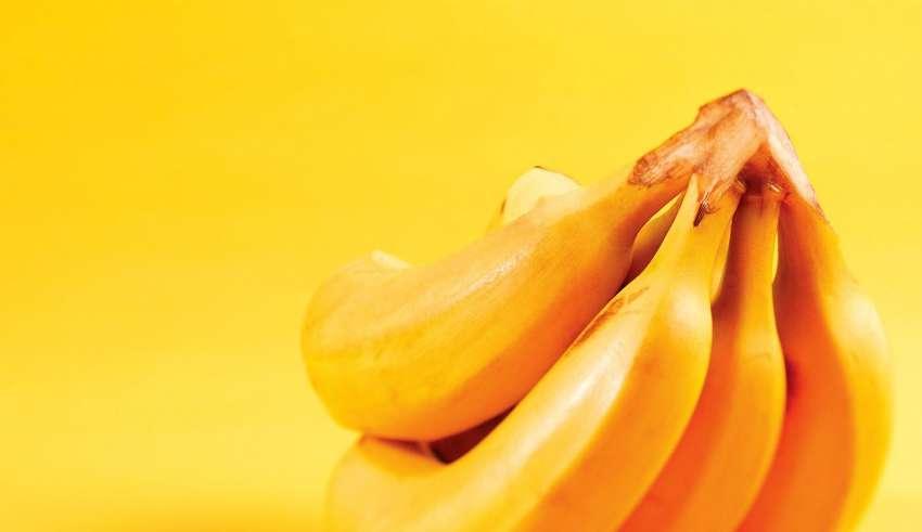 Польза и вред бананов для организма человека
