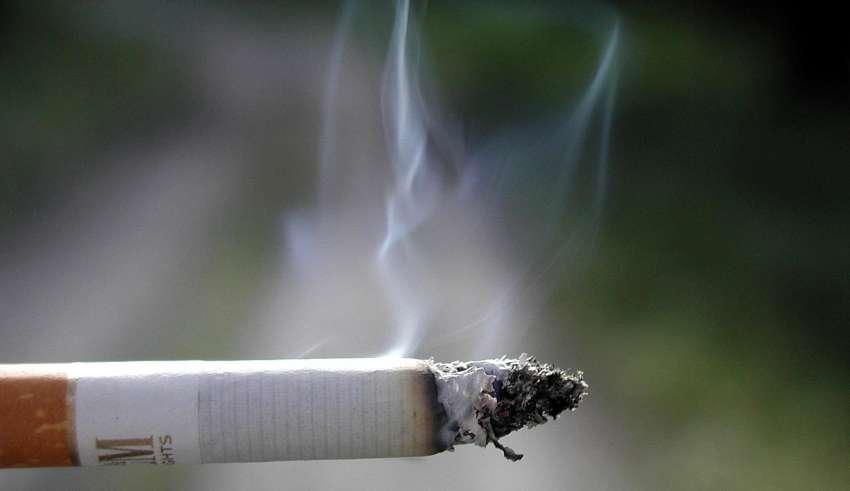 В чем вред от табачного дыма?