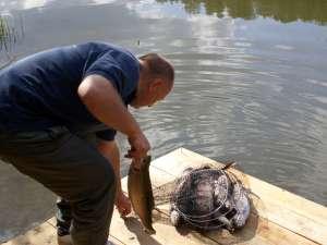 Рыбалка в Калуге и Калужской области 2017