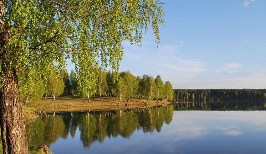Рыбалка в Ярославле и Ярославской области 2017